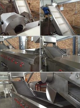 Frozen Chips Manufacturing Plant on Auction
