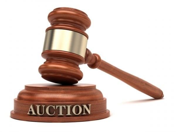 PROPERTY DEVELOPMENT AUCTION (MUSINA)