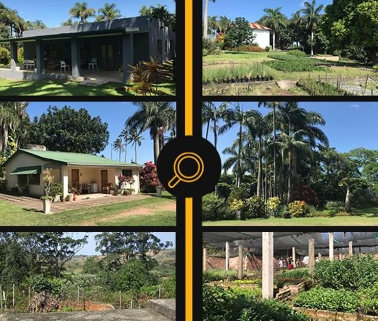 ONLINE PROPERTY AUCTION - SHAKASKRAAL, KZN