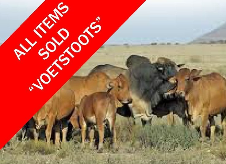 NOVEMBER LIVESTOCK AND WILDLIFE ONLINE AUCTION