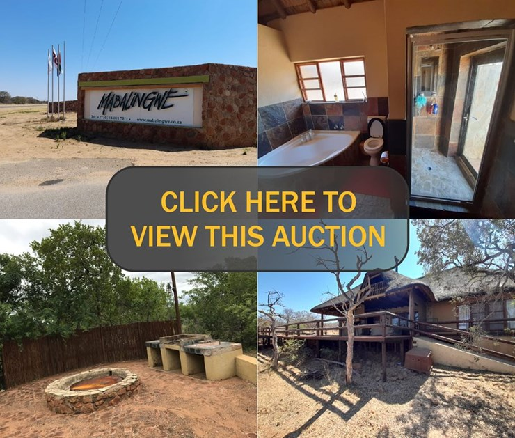 TRUST CONSOLIDATION PROPERTY AUCTION MABALINGWE